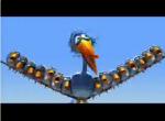 Les OISEAUX plumés (vidéo)